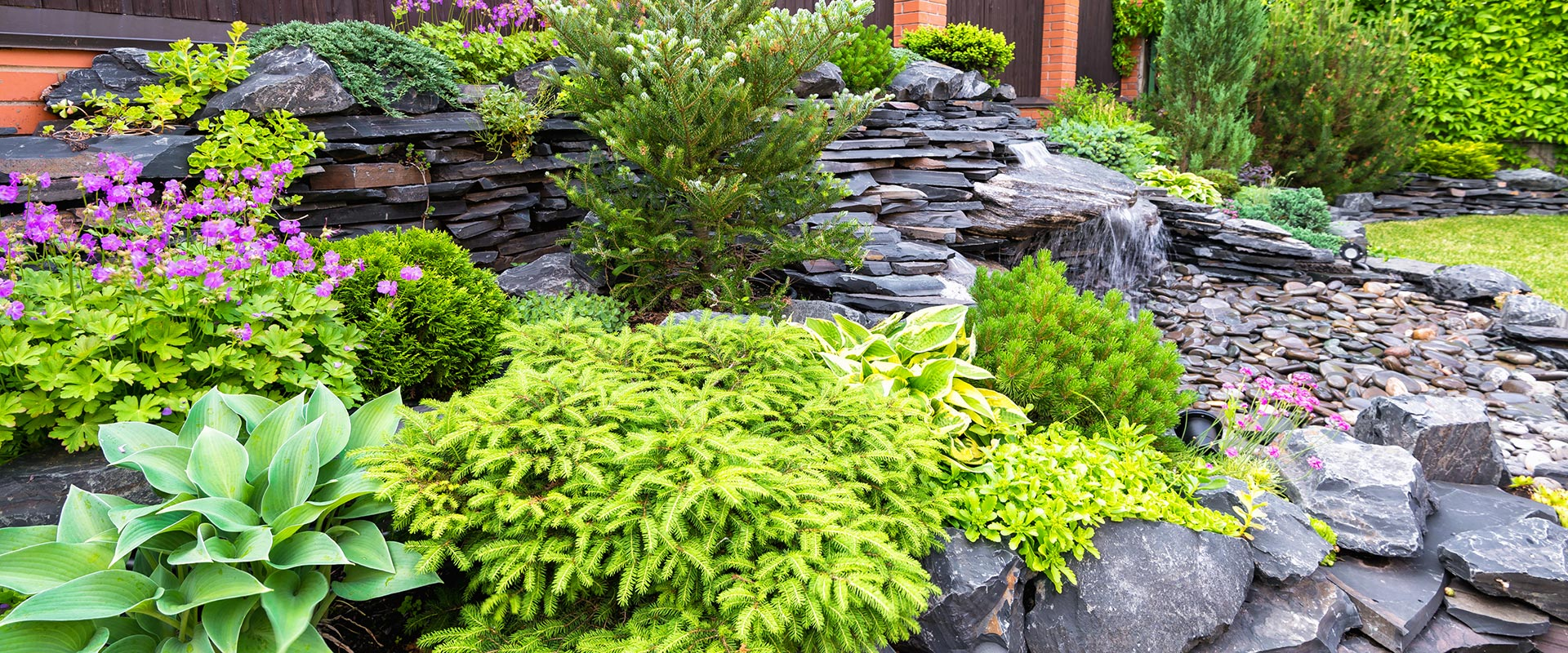 yard with beautifully arranged plants and hardscapes