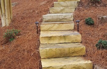 stone steps with landscape lighting