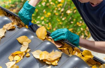Leaf Mulching Alpharetta GA